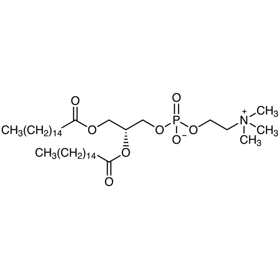 1,2-Dipalmitoyl-sn-glycero-3-phosphocholine