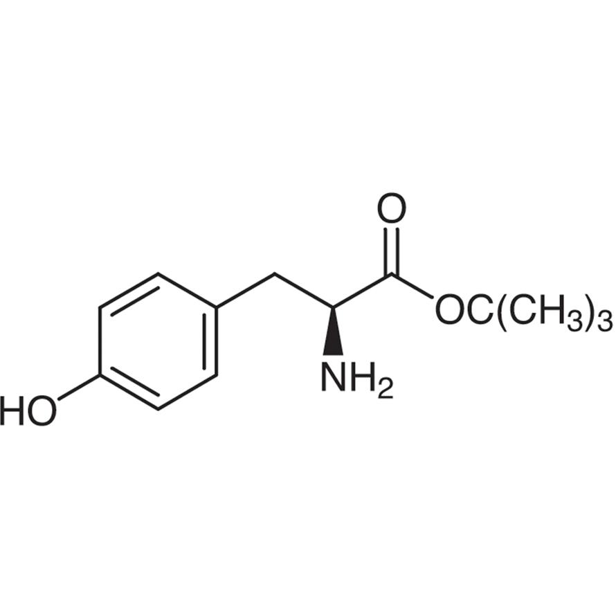 L-Tyrosine tert-Butyl Ester