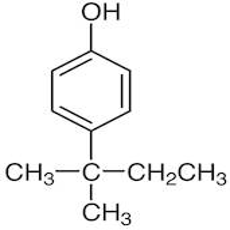 4-tert-Amylphenol
