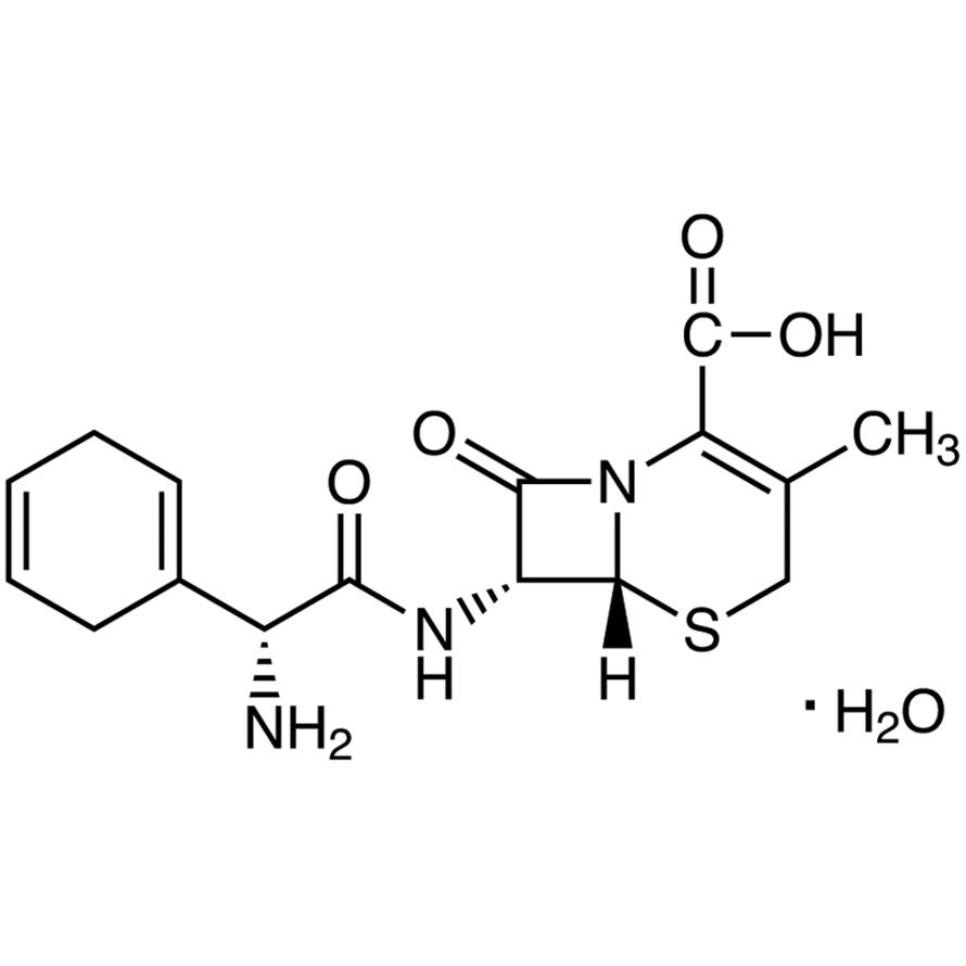 Cephradine Monohydrate