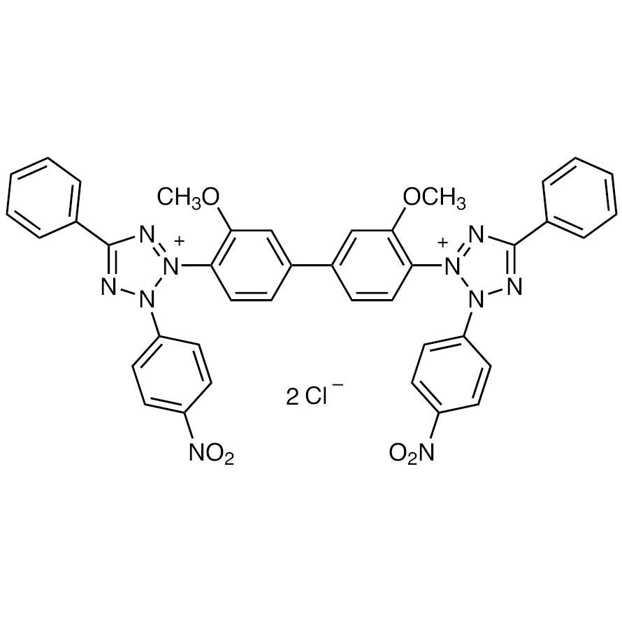 Nitro Blue Tetrazolium [for Biochemical Research]