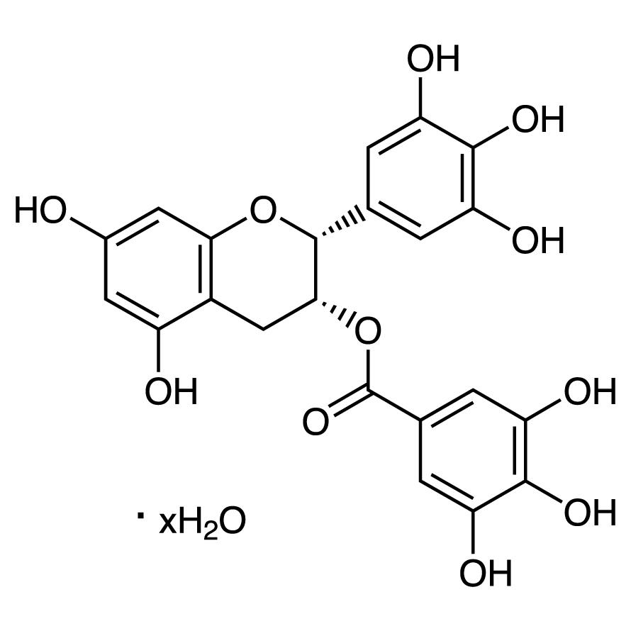 (-)-Epigallocatechin Gallate Hydrate