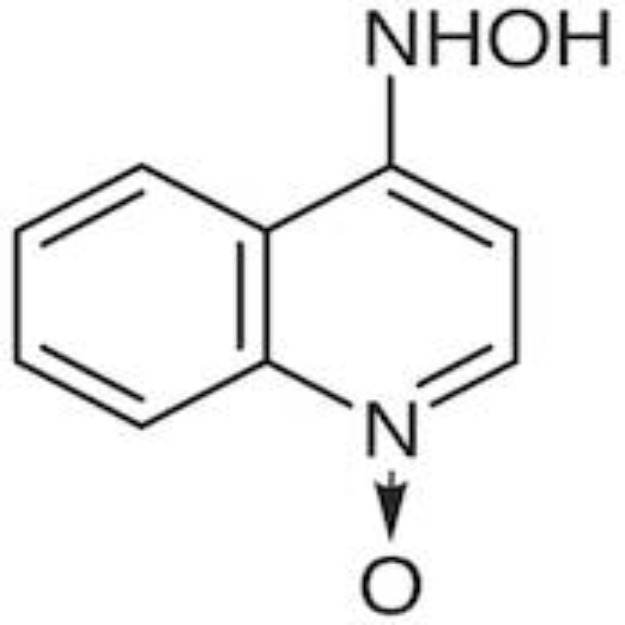 4-(Hydroxyamino)quinoline N-Oxide