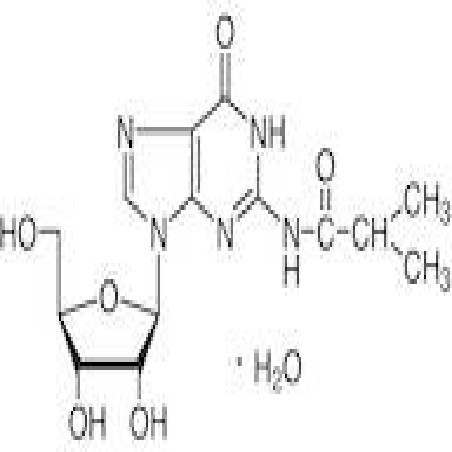 N2-Isobutyrylguanosine Monohydrate