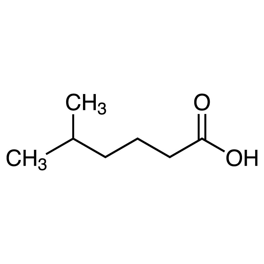 5-Methylhexanoic Acid