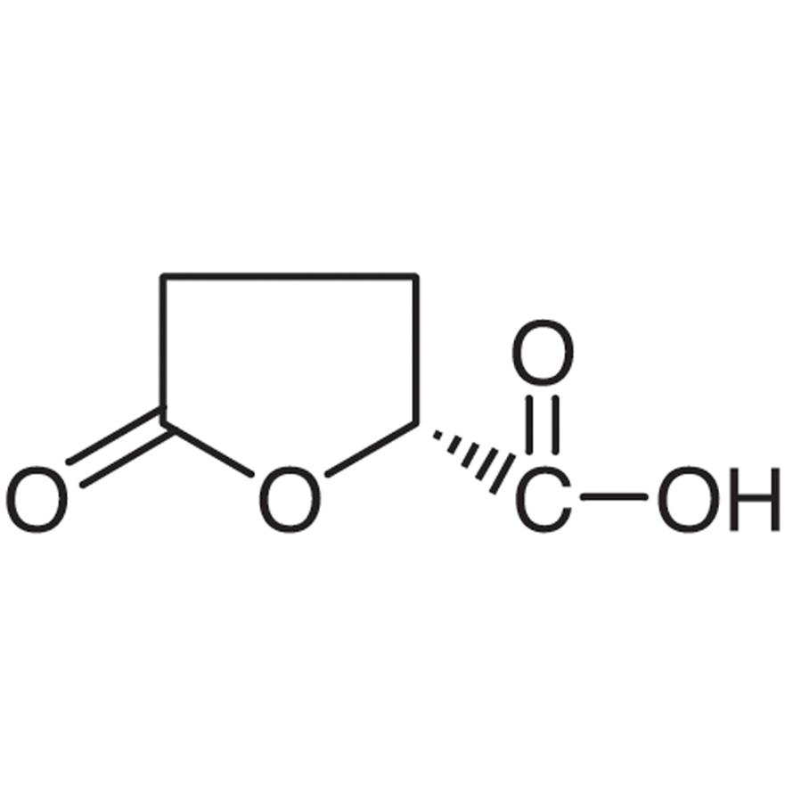 (R)-(-)-5-Oxotetrahydrofuran-2-carboxylic Acid