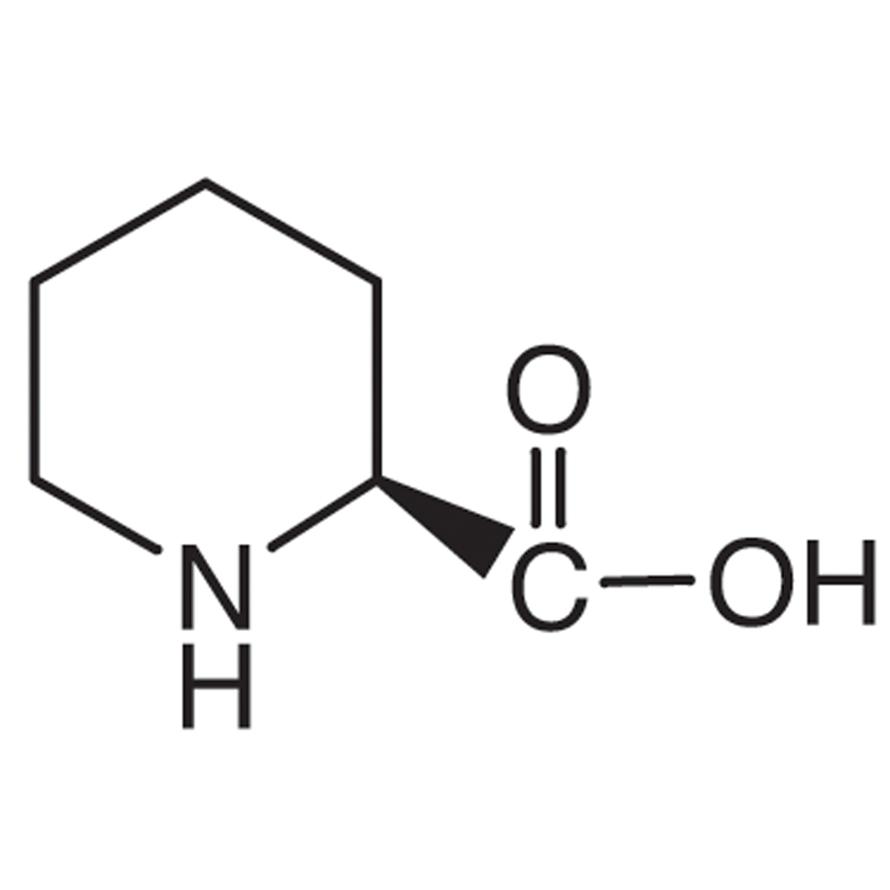 L-Pipecolic Acid