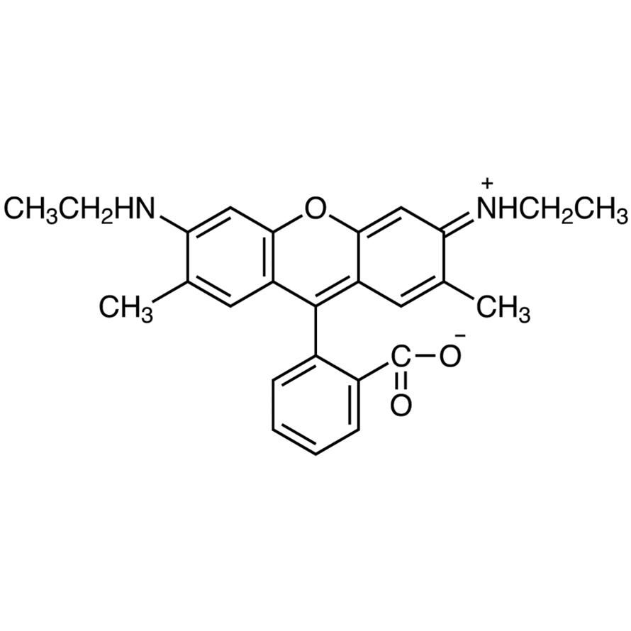 Rhodamine 19