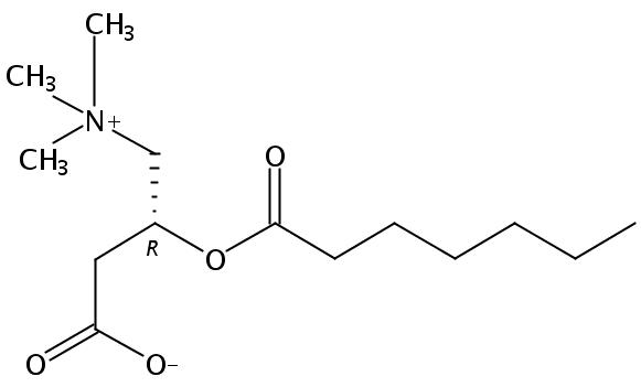 Heptanoyl-L-Carnitine HCl salt
