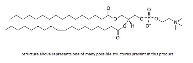 Phosphatidylcholine,PC (egg)