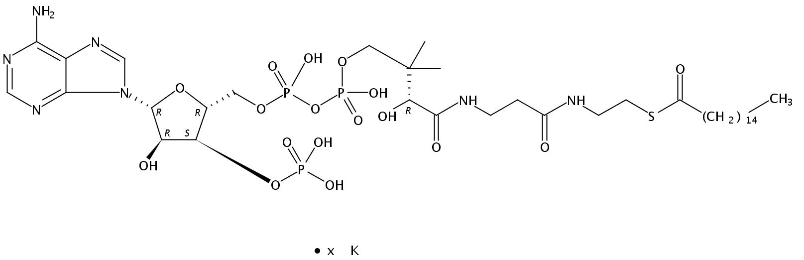 Hexadecanoyl Coenzyme A K salt