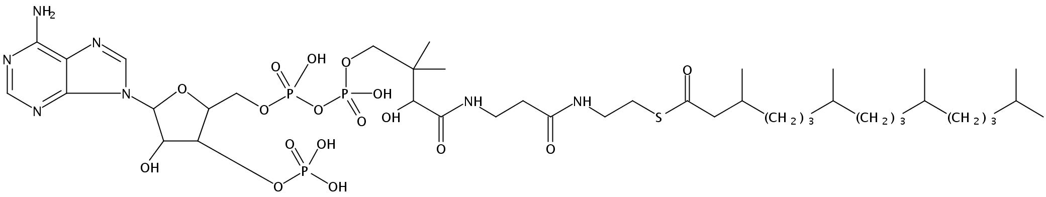 3,7,11,15-Tetramethylhexadecanoyl Coenzyme A (NH4)3 salt