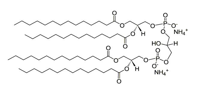 Cardiolipin C14:0 NH4+ salt