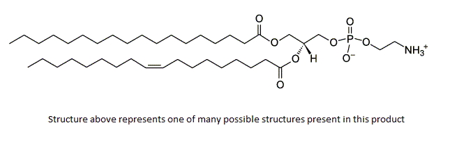 Phosphatidylethanolamine, PE (egg)