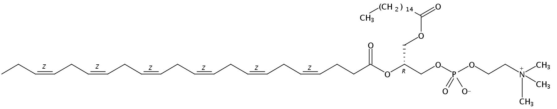 1-Palmitoyl-2-Docosahexenoyl-sn-Glycero-3-Phosphatidylcholine