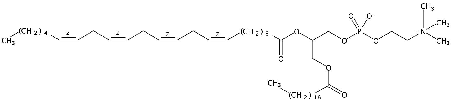 1-Stearoyl-2-Arachidonoyl-sn-Glycero-3-Phosphatidylcholine