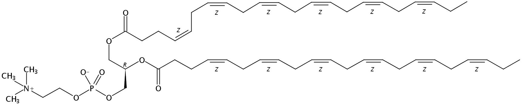 1,2-Didocosahexaenoyl-sn-Glycero-3-Phosphatidylcholine