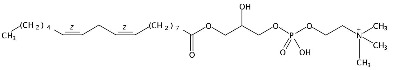 1-Linoleoyl-2-Hydroxy-sn-Glycero-3-Phosphatidylcholine