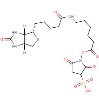 Sulphosuccinimidyl-6-(biotinamido)hexanoate