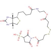 Sulphosuccinimidyl-2-(biotinamido)ethyl-1,3-dithiopropionate