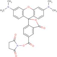 5(6)-Carboxytetramethylrhodamine N-hydroxysuccinimide ester