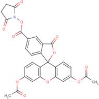 5(6)-Carboxyfluorescein diacetate N-hydroxysuccinimide ester