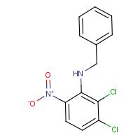 N-Benzyl-2,3-dichloro-6-nitroaniline