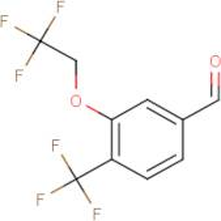 3-(2,2,2-Trifluoroethoxy)-4-(trifluoromethyl)benzaldehyde