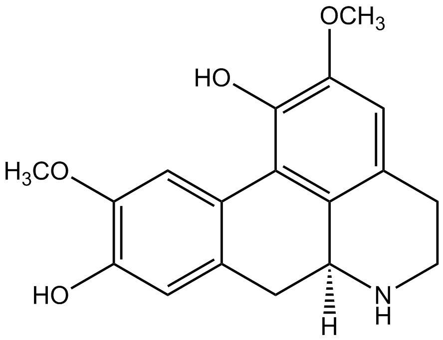 Norisoboldine