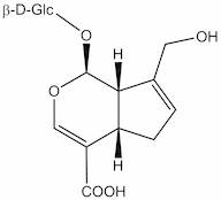 Geniposidic acid