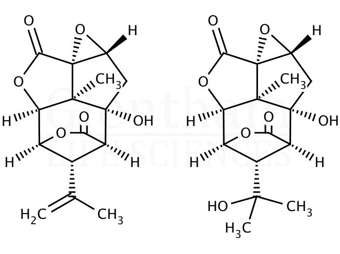 Picrotoxin