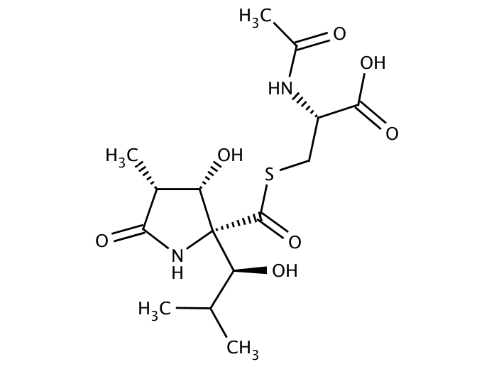 Lactacystin