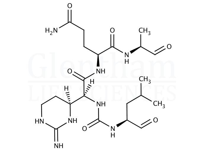 Elastatinal microbial