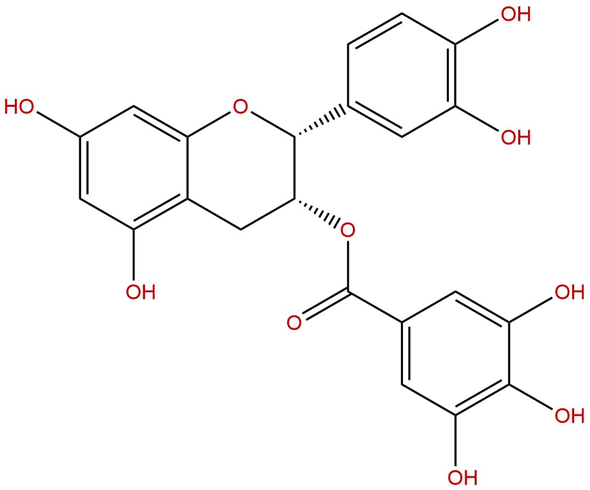Epicatechin gallate