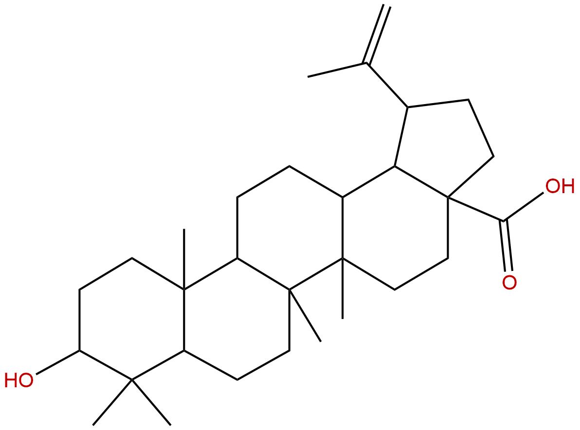 3-Epibetulinic acid