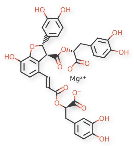 Magnesium Salvianolate B