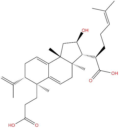 Poricoic acid B