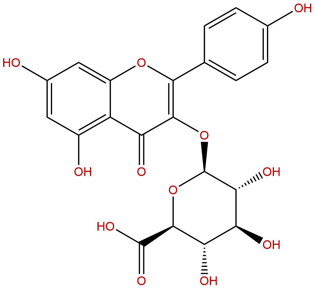 Kaempferol 3-glucuronide