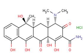 Tetracycline hydrochloride