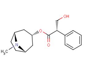 L-Hyoscyamine