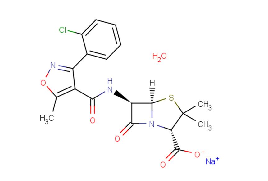 Cloxacillin sodium monohydrate