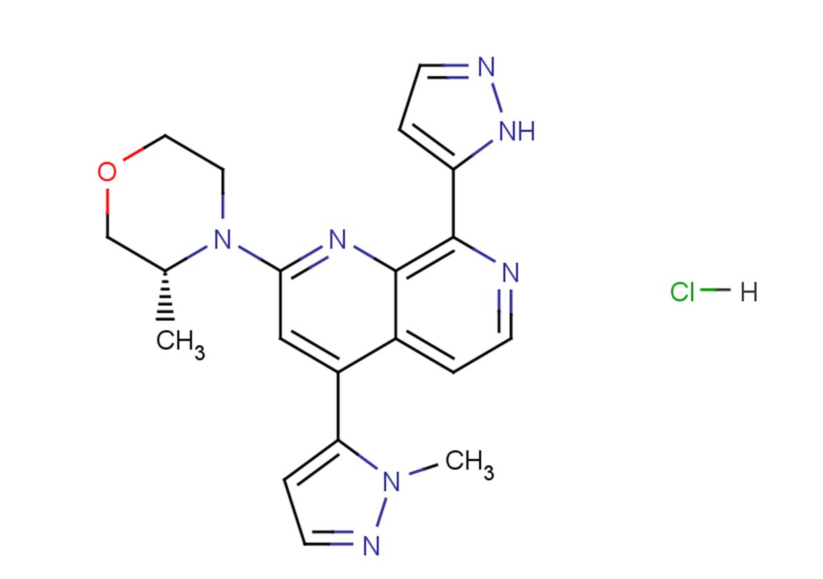 BAY-1895344 hydrochloride