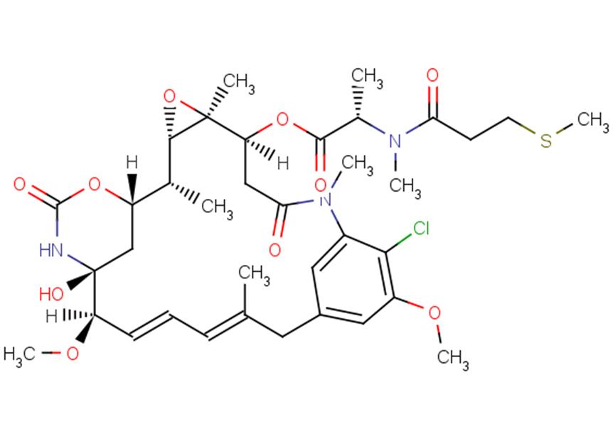 S-methyl DM1