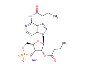 Bucladesine sodium salt