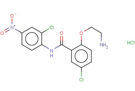 HJC0152 hydrochloride