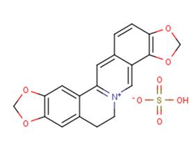 Coptisine sulfate