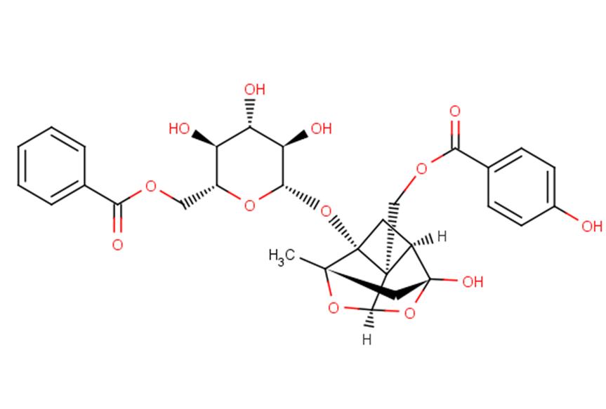 Benzoyloxypeoniflorin