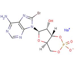 8-Bromo-cAMP(sodium salt)
