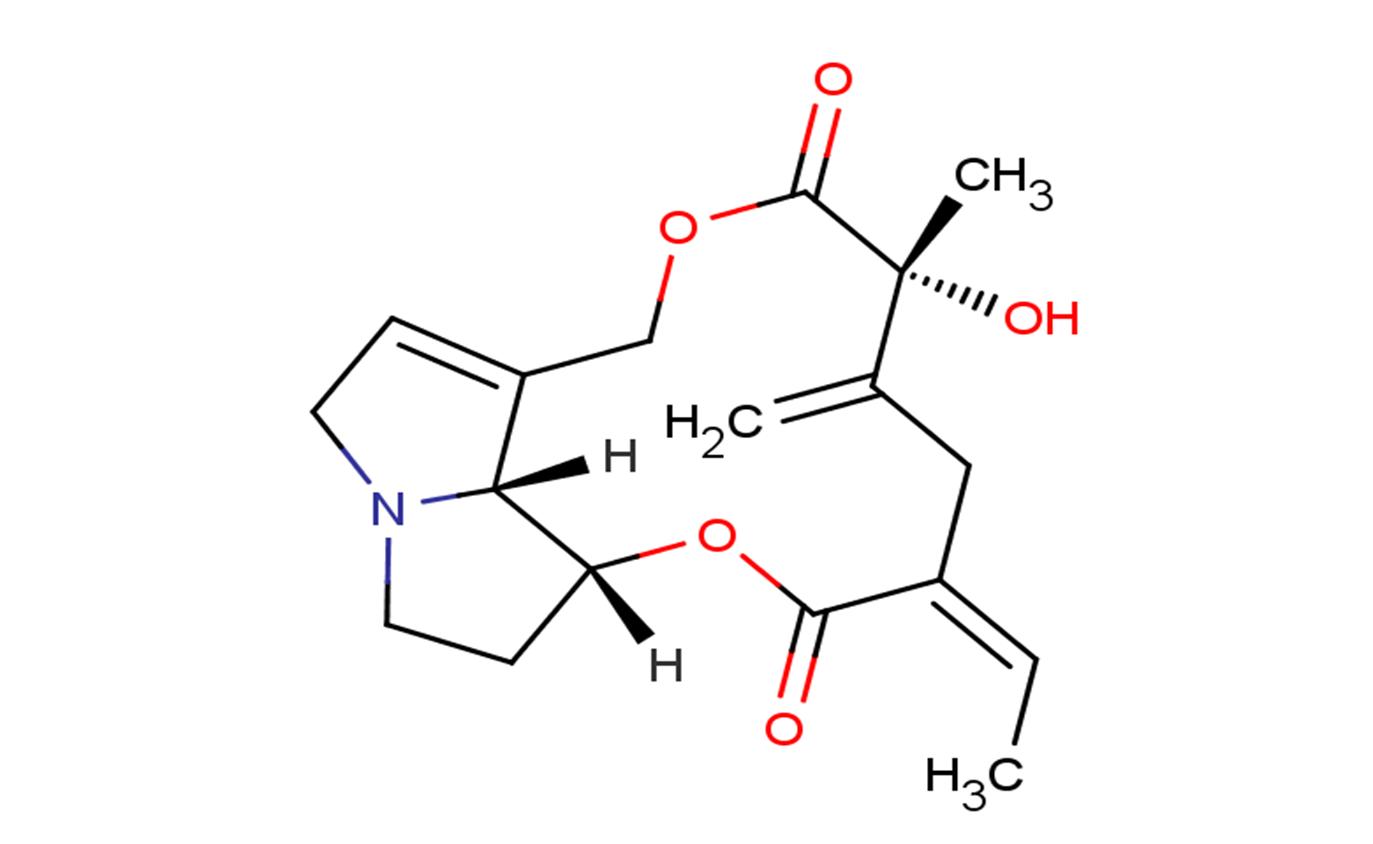 Seneciphylline