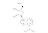 N6,N6-Dimethyladenosine